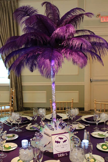 Images tagged quot feathers balloon artistry
