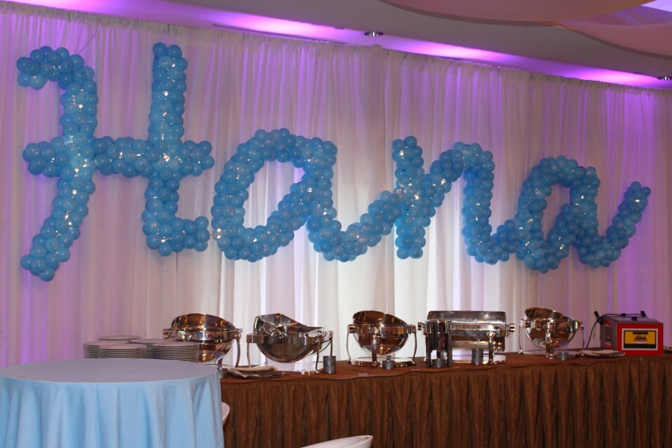 Sculpture Names In Balloons 183 Party Amp Event Decor